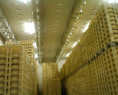 refrigeracion-industrial-secadero-quesos-cerrato-palencia