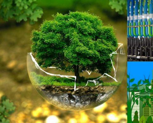 VERDE Certificacion Medioambiental y como influye una instalacion frigorifica con CO2 refrigerante