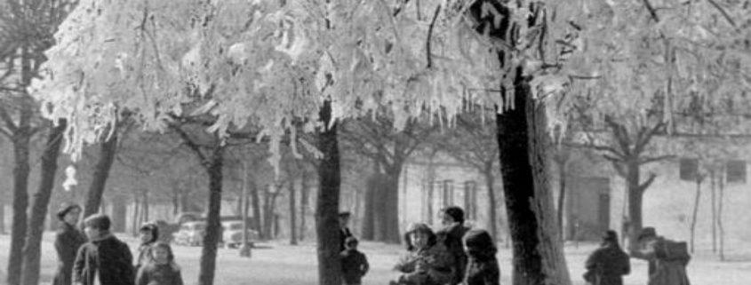 La legendaria ola de frío siberiano de 1956 en España|Noticias