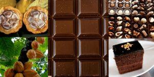 Conservación del chocolate