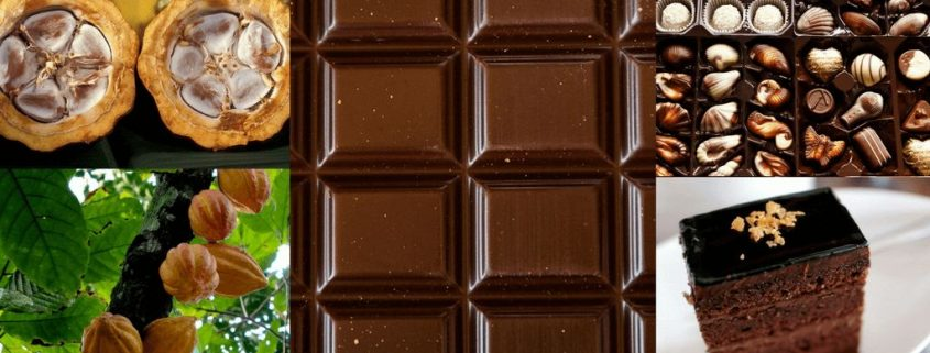 CONSERVACION INDUSTRIAL DEL CHOCOLATE|Noticias